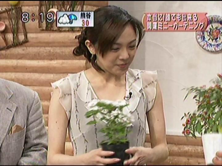 森本智子の画像 p1_8